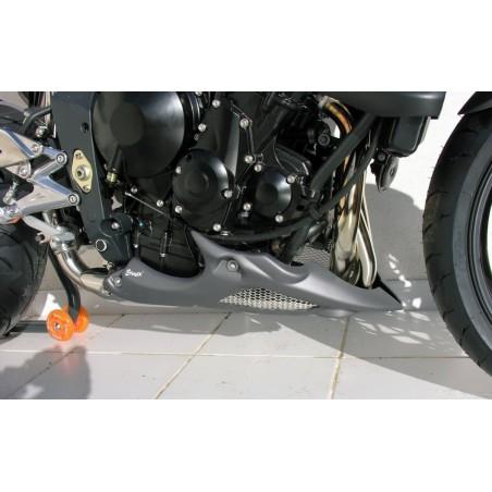 Sabot moteur Ermax pour Triumph Street Triple 675 R 2009-2011