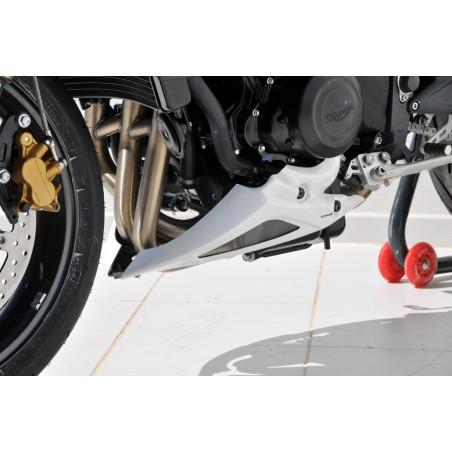 Sabot moteur Ermax pour Triumph Street Triple 675 R 2012